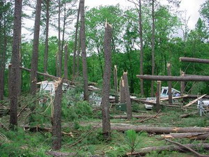 Straight line winds can be as damaging as a tornado. This image is from a park in Tennessee. (NWS)