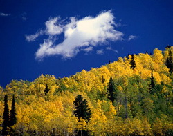ThorntonWeather.com's picks for the best drives to view the fall foliage.