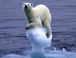 The polar bears won't be happy!  New UK climate change computer emits as much CO2 as 2,400 homes.