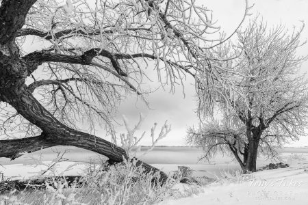 Winter Weather Preparedness Week concludes. Are you ready for winter?